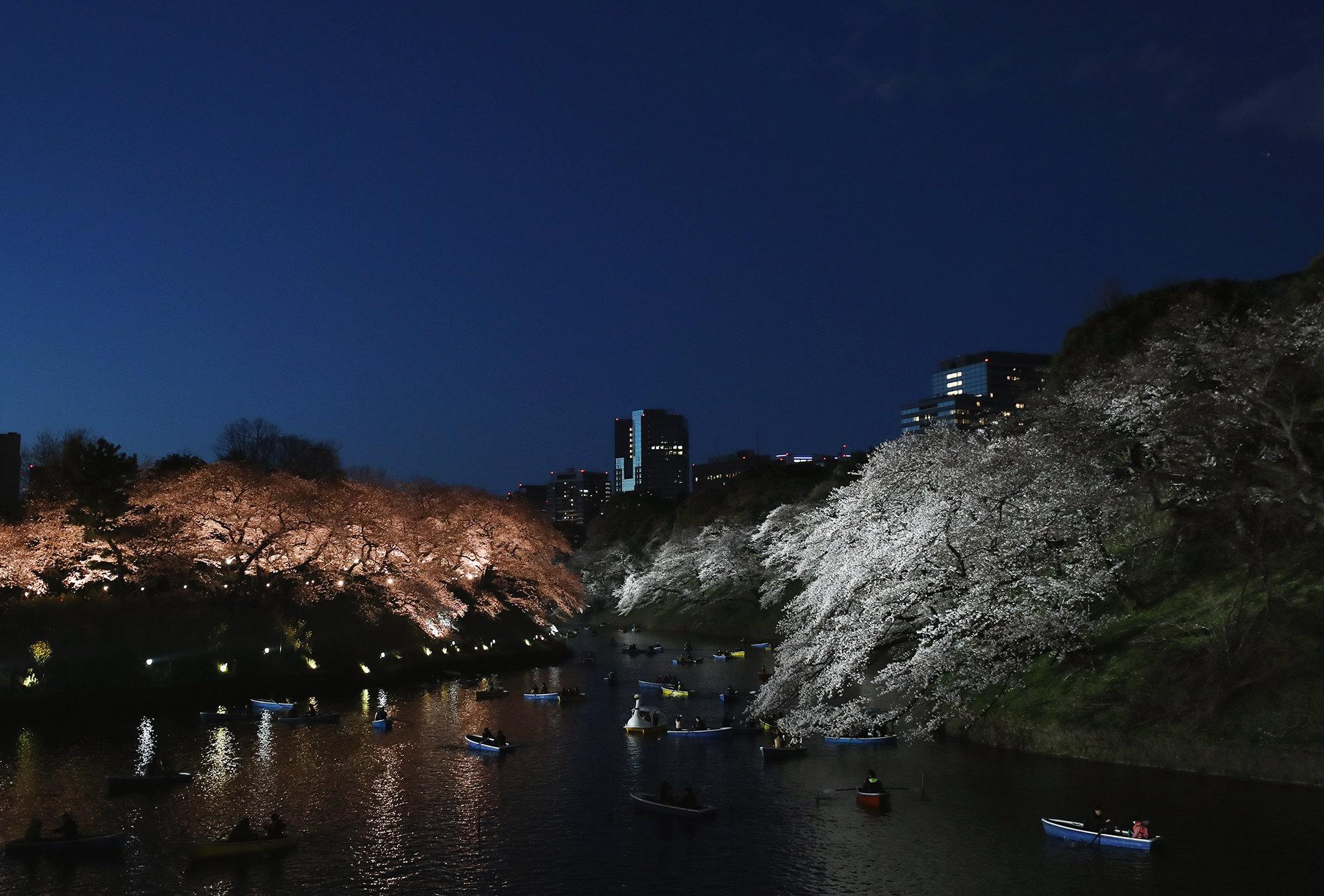 Парк Чидоригафучи