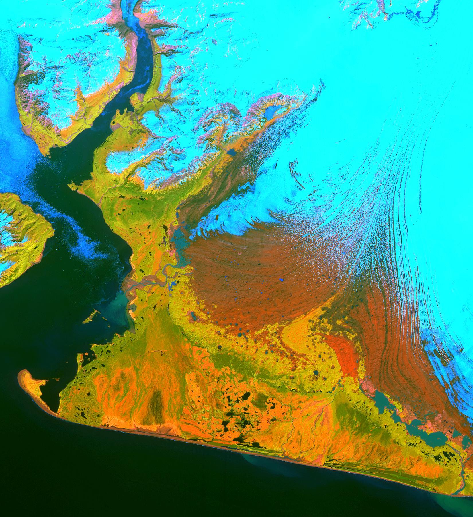 Это изобрежение со спутника ASTER охватывает площадь 40 на55 километров надюго-западной частью ледника Маласпина иЛедяной залив наАляске. Снег илед наснимке — светло-голубые, густая растительность — желто-оранжевая изеленая, а гравийные участки — оранжевым. Пословам доктора Денниса Трабанта (Геологическая служба США, Фэрбенкс), ледник Маласпина истончается. Терминальная морена защищает его отконтакта соткрытым океаном; безморены, или если уровень моря поднимется достаточно, чтобы соединить ледник сокеаном, он начнет терять массу. Данные ASTER используются длямониторинга размеров идвижения примерно 15 000 приливных ипредгорных ледников наАляске. Сейчас данные говорят отом, что всего несколько десятков ледников Аляски растут. Подавляющее большинство изних отступают.