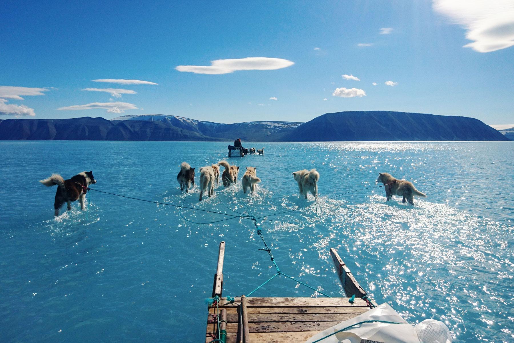Команда Датского метеорологического института направляется потающему морскому льду засвоим исследовательским оборудованием насеверо-западе Гренландии. Впоследние девять лет средняя температура напобережье Гренландии выросла на7 градусов