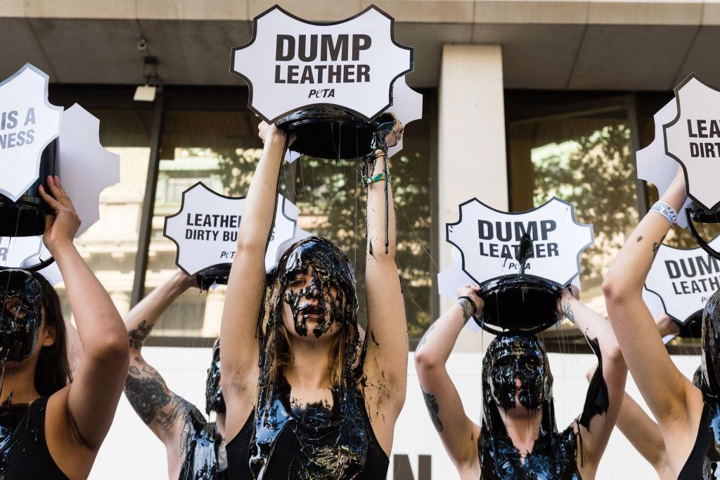 Активисты протестуют против использования кожи вмодной индустрии,