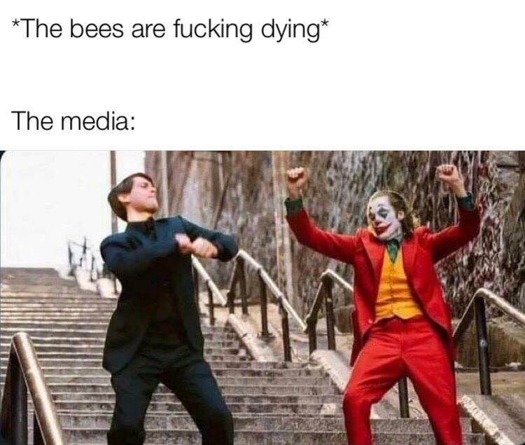 «Долбанные пчелы вымирают!» «Реакция медиа:»