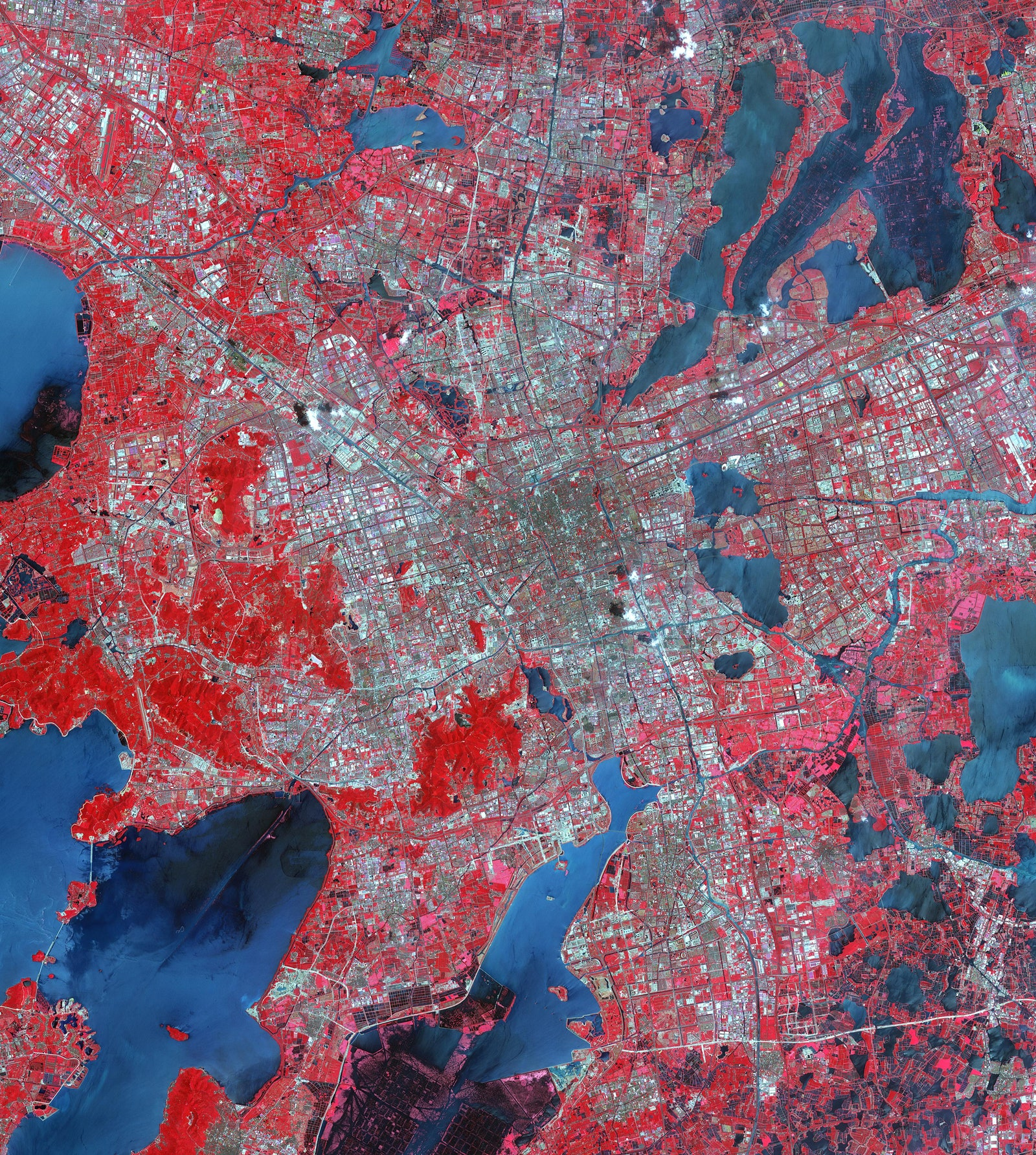 Suzhou is one of the largest cities in East China. It sits at the base of the Yangtze River and has become one of China's main economic centers. This image combines satellite imagery from NASA's Landsat satellite taken in 1984 and an ASTER image from 2015. The combination shows how the city grew from 900,000 people in 1990 to 5.3 million in 2017.PHOTOGRAPH: NASA/METI/AIST