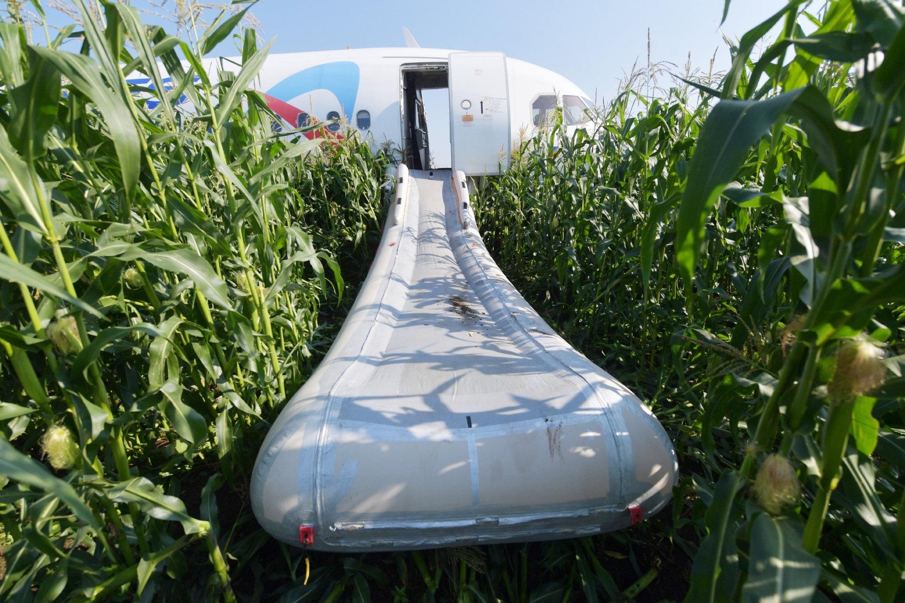 Выпущенный надувной трап A321 вкукурузном поле