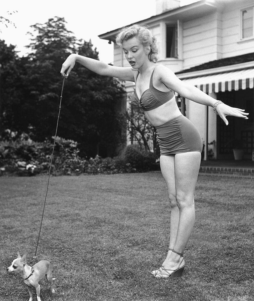Мэрилин Монро во время фотосессии назаднем дворе голливудского агента Джонни Хайда, 17 мая 1950 года, Беверли-Хиллз, Калифорния