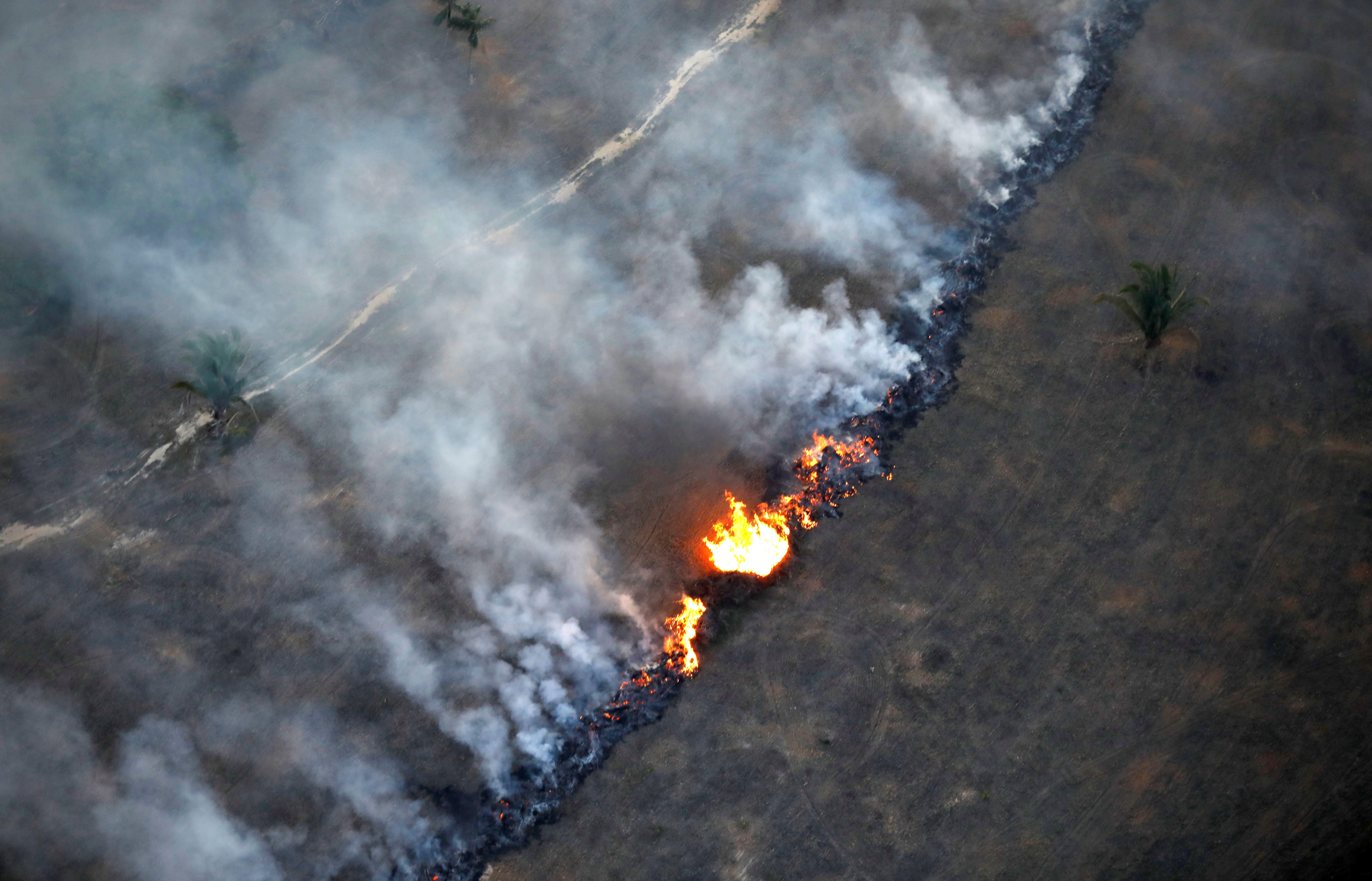 Лесной пожар вБразилии,