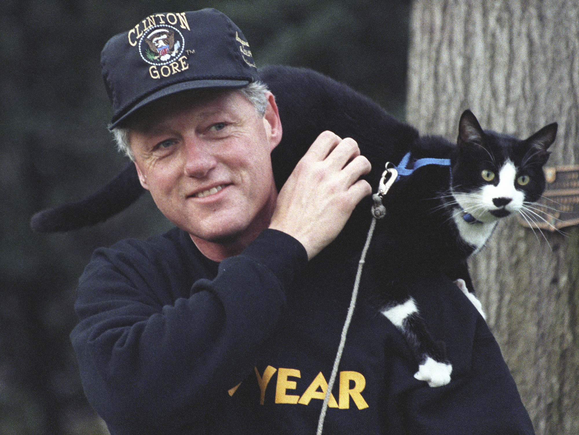 President Bill Clinton, wearing pullover sweatshirt and a Clinton-Gore administration baseball hat, smiles while taking a walk on the White House grounds with the First Pet, Socks the Cat, with black fur, white face, and blue collar, perched on his shoulders, with a plaque mounted to a tree behind them, Washington, District of Columbia, December 20, 1993. Courtesy National Archives. КРЕДИТ Smith Collection/Gado/Getty Image