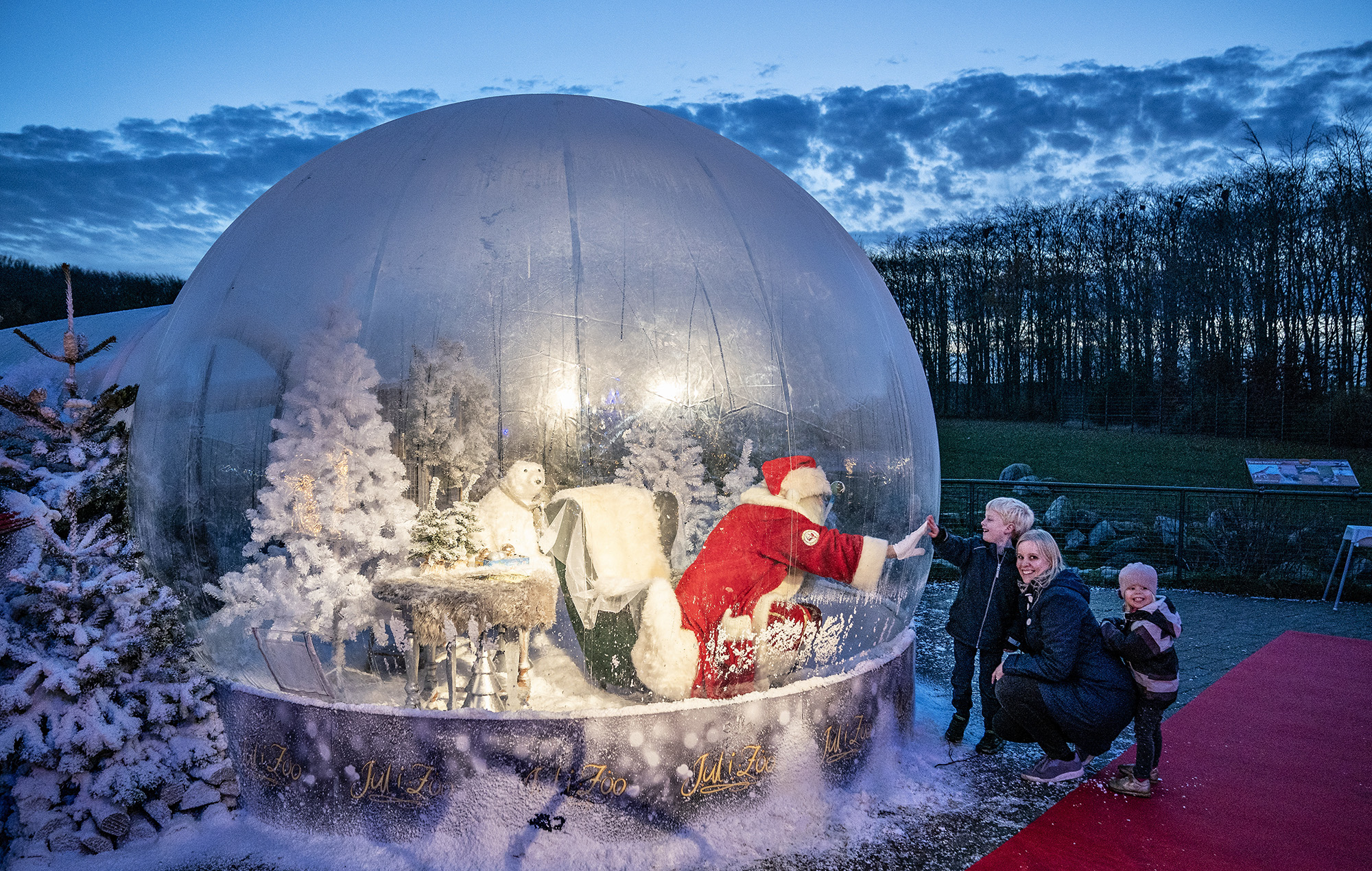 Santa Claus in a life size snow ball made of plastic as a safety measure against coronavirus in Aalborg zoo, 13 November 2020. Christmas decorations and lightings have adorned Aalborg zoo, but in order to follow coronavirus restrictive and safety measures Santa Claus was put in a life size snow ball made of plastic to greet the kids without worrying about infections. . EPA-EFE/Henning Bagger