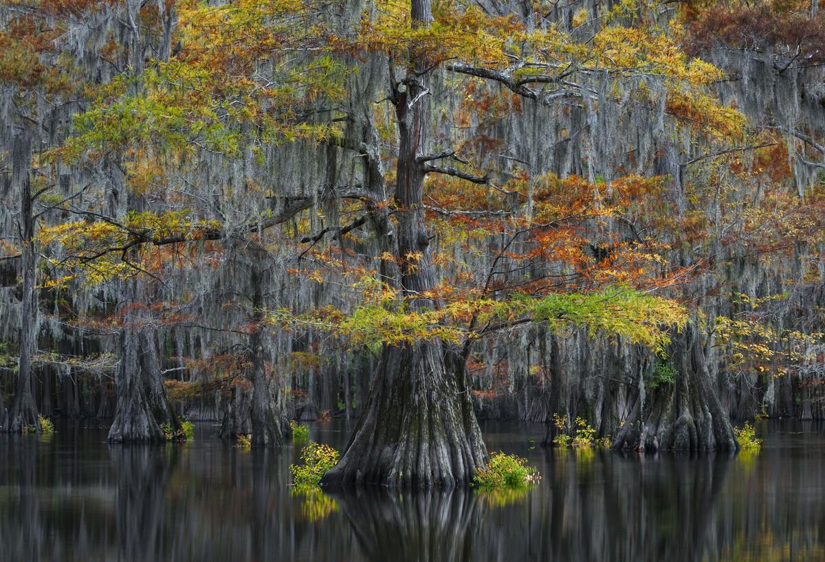 Southern United States #Thorsten Scheuermann / International Landscape Photographer of the Year