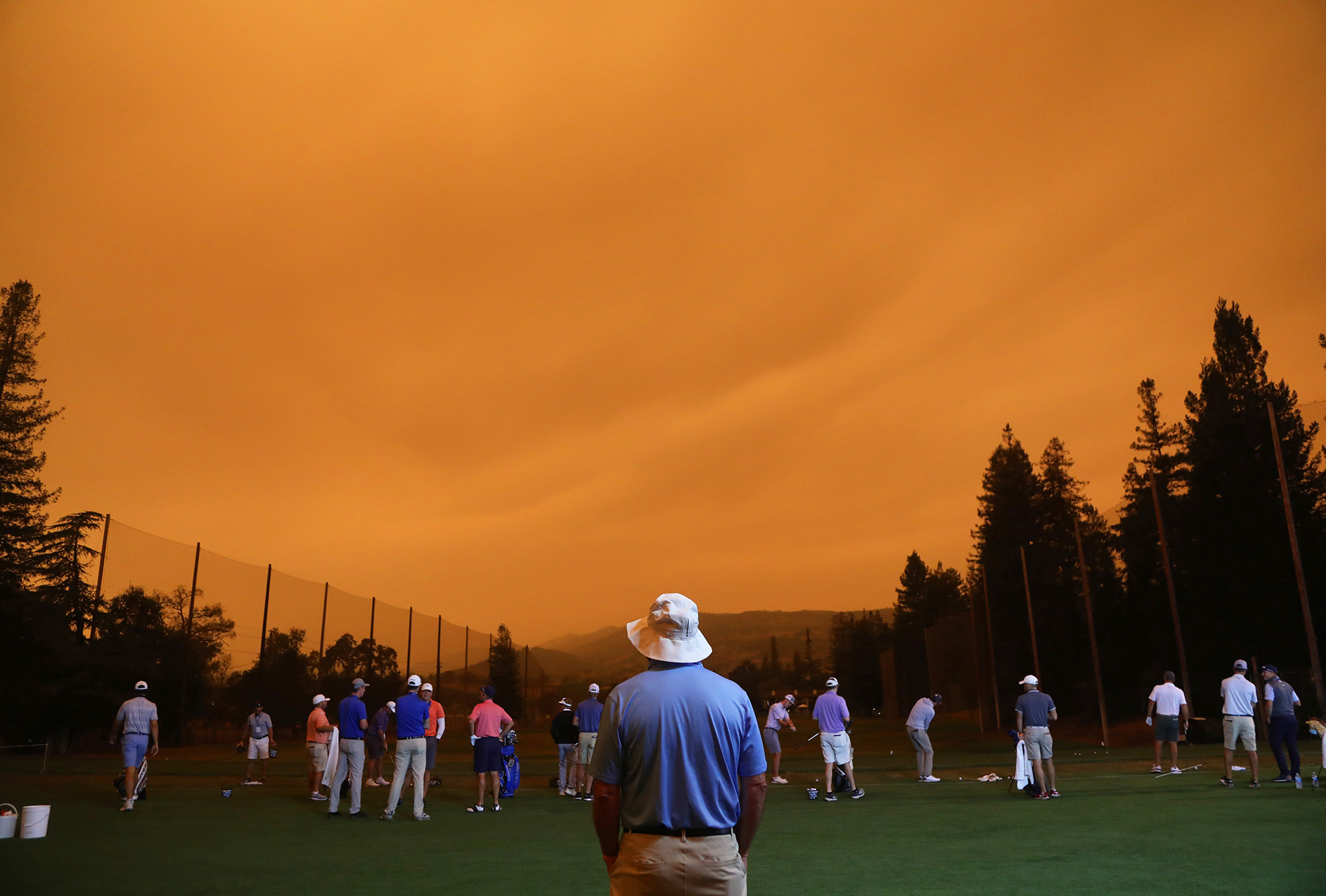 Гольф-поле, Напа, Калифорния.