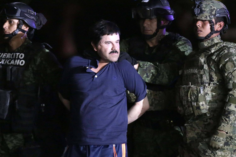 Задержание Эль Чапо вМехико, 8 января 2016