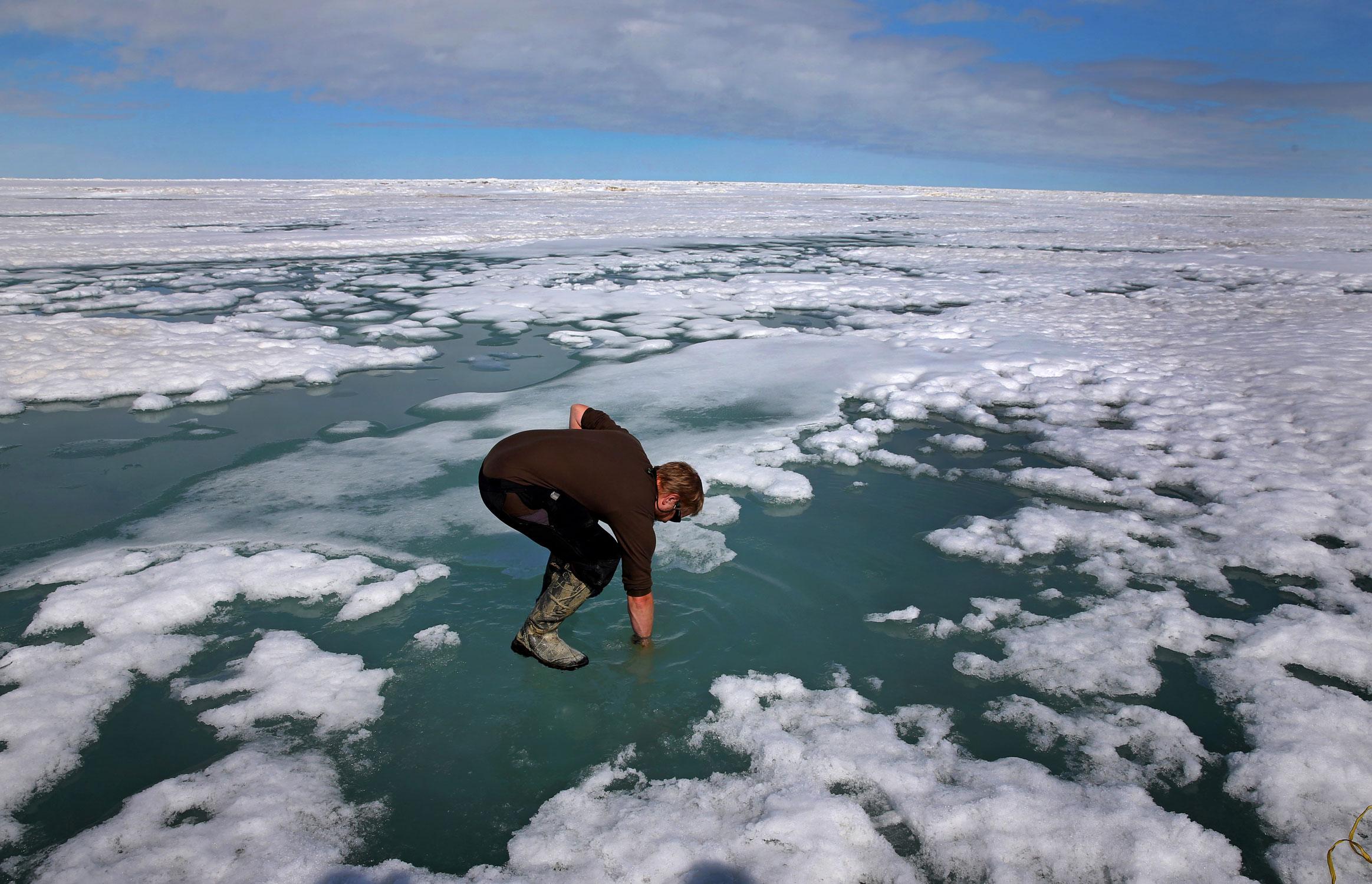 Исследователь Джош Джонс окунает руку врастаявший арктический лед, чтобы понять, насколько соленой может быть вода. Барроу, Аляска