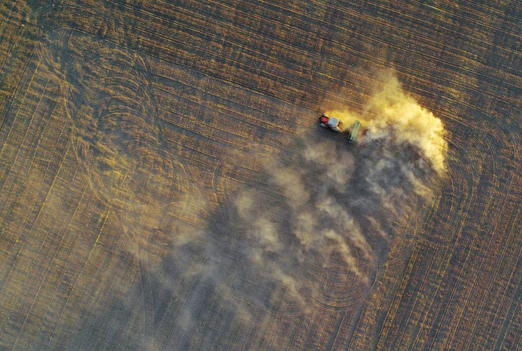 Уборка урожая наорганической ферме вТурции