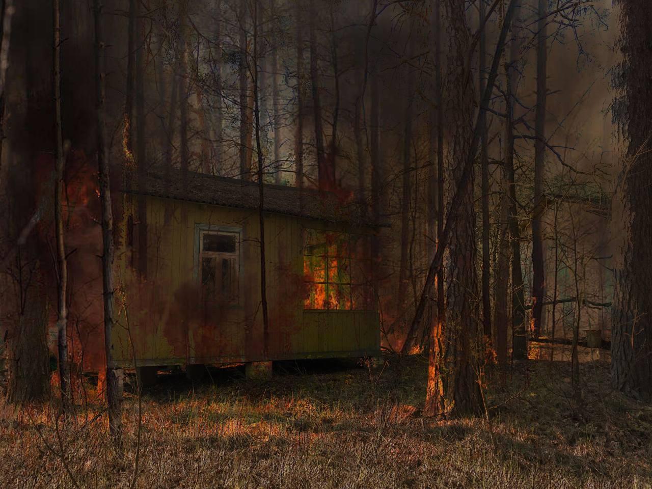 Лесной пожар, Припять