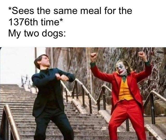 «Одна ита же еда в