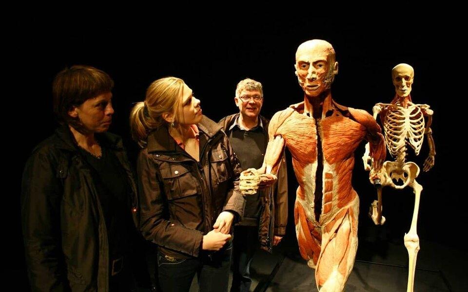 Выставка человеческих тел
