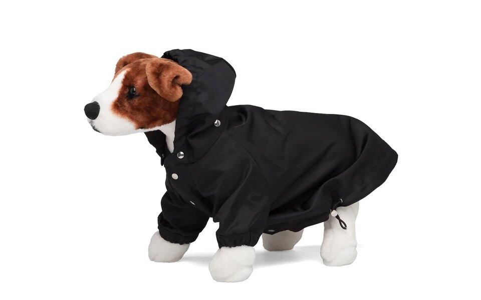 Prada выпустили дождевик длясобак — он стоит больше $500