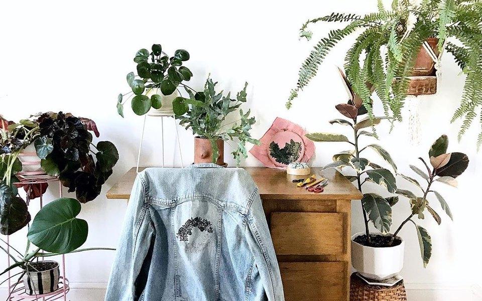Домашний антистресс: 5 вещей впомощь тем, кто любит комнатные растения