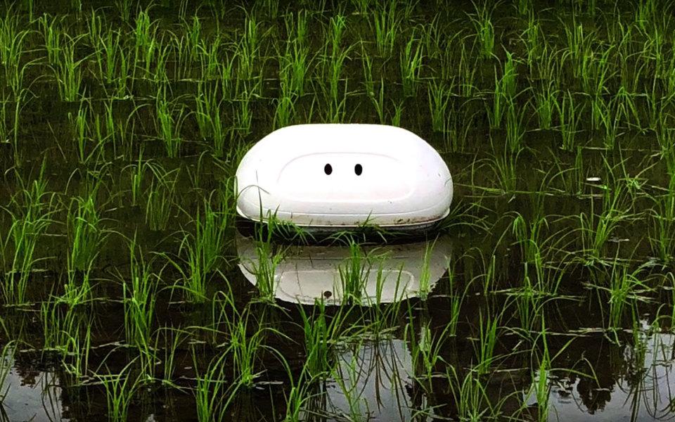 В Японии разработали утку-робота. Она помогает бороться свредителями нарисовых полях
