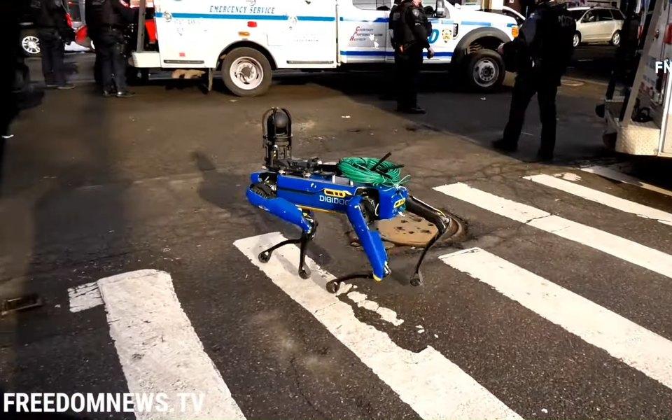 Робот-собака по кличке Дигидог от Boston Dynamics, используемый полицейскими Нью-Йорка
