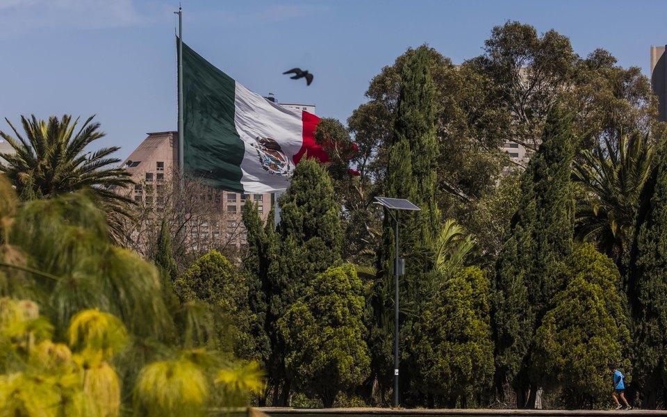 Палата депутатов Мексики одобрила законопроект о легализации марихуаны