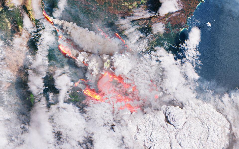Как ипочему горит Австралия: 8 вещей, которые нужно знать осамых мощных пожарах завсю историю страны