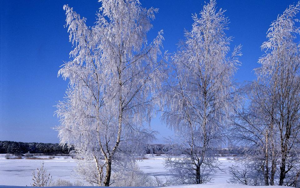 Синоптики прогнозируют аномальные морозы вРоссии