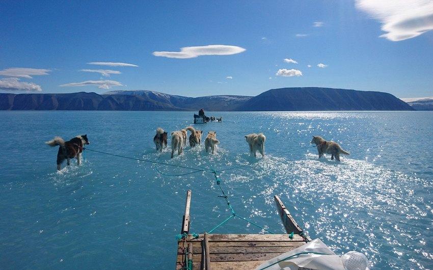 Датские исследователи едут по стремительно тающим арктическим льдам, чтобы забрать оборудование