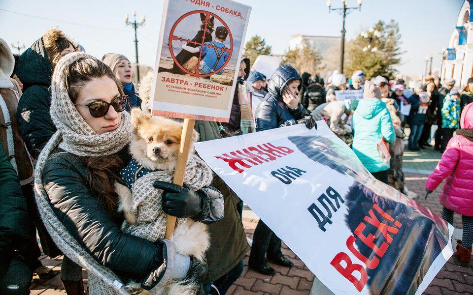 В России приняли первый вистории закон обобращении сживотными. Запретили контактные зоопарки иусыпление животных