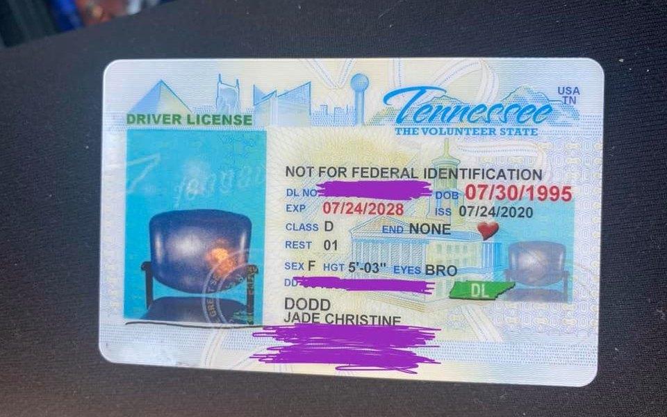 Американка получила водительское удостоверение сфотографией стула вместо своего портрета