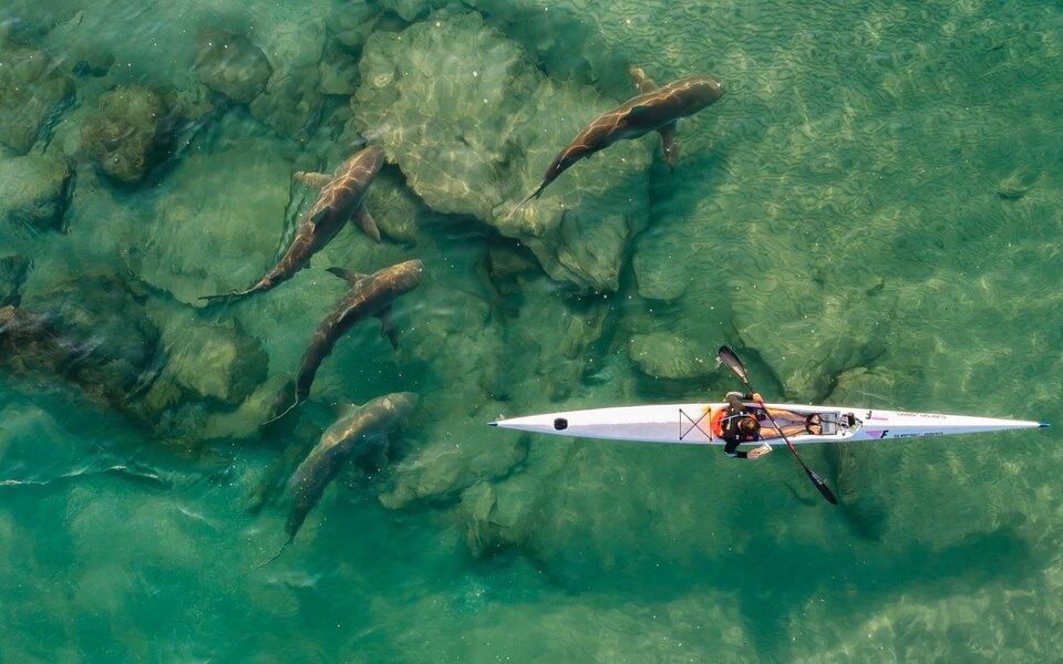 15 лучших фотографий, снятых сдрона. Победители конкурса Drone Photo Awards 2021