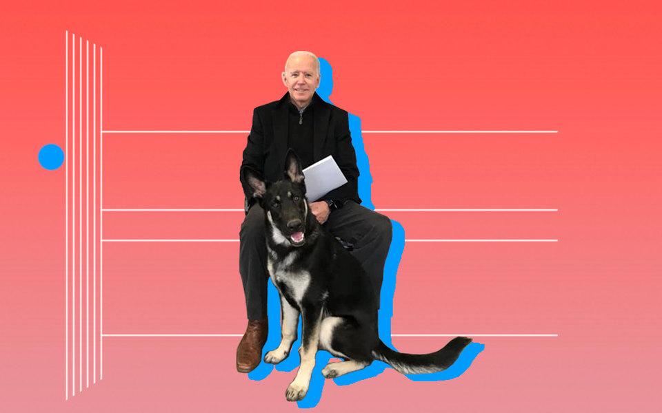 Мужчина иего собаки: Джо Байден иего немецкие овчарки Чемп иМейджор