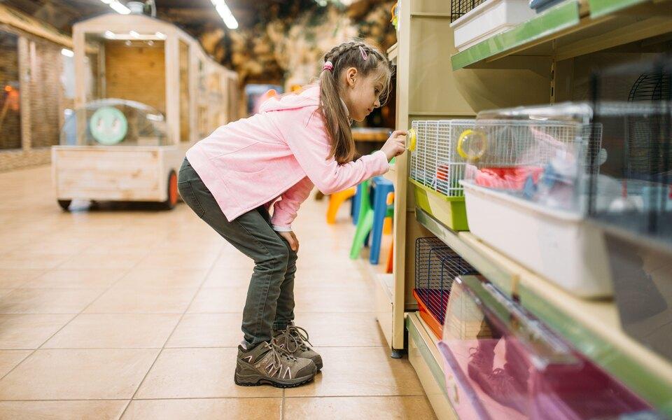 В Госдуму внесли законопроект о запрете продавать животных в зоомагазинах и на птичьих рынках