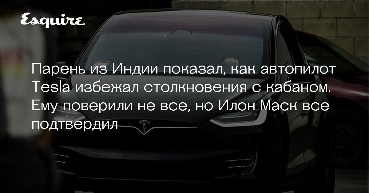 Автопилот Tesla избежал столкновения с кабаном | Журнал Esquire.ru - Esquire