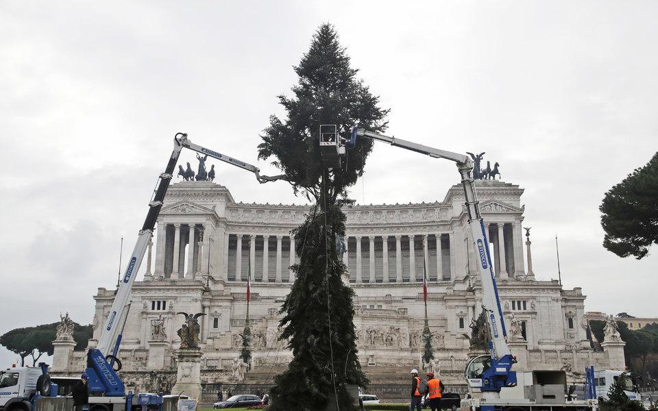В Риме установили главную рождественскую елку, но она непонравилась жителям города (снова)