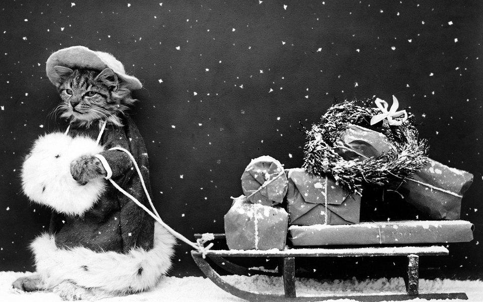 Елка, гирлянды, снежинки ине только — как подготовить дом (и себя) кновогодним праздникам? Опрос длячитателей Esquire