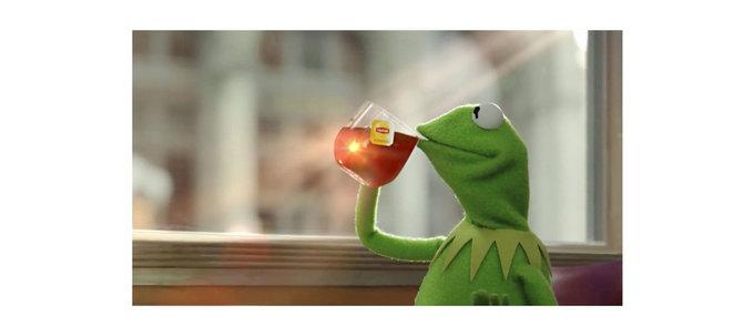 К какому умозаключению приходит лягушонок Кермит зачашкой чая?